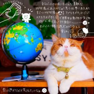 世界旅行出来ちゃう気分の素敵な地球儀♬