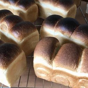パン教室で「湯種食パンとBLTサンド」