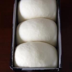 今日の山食と、お味噌に見える白いブツ
