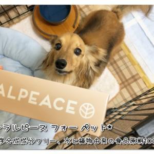 愛の歯みがき -オーラルピース for PET-