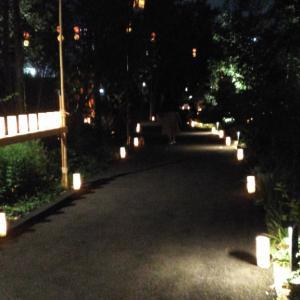 外苑前、表参道近辺にお住まいの方に、ののあおやま 星灯篭