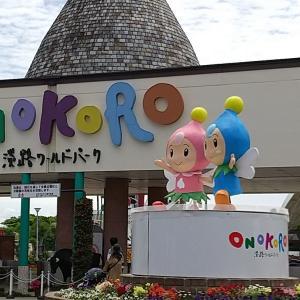 淡路島旅行③ あわじ花さじき~ワールドパークONOKORO