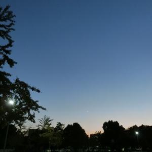 晩秋ですが、真夏!