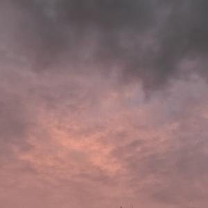 カミュとジェミニ杯と、雨上がりの夕空