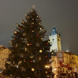 クリスマスツリー点灯フライング