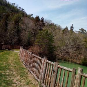 子連れで西谷の森公園へハイキング?☆兵庫県