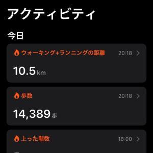 10km以上歩きました。