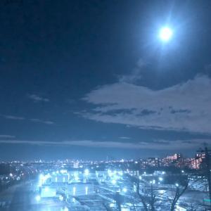 明るい獅子座の満月⭐︎