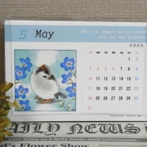 いろんな鳥さん 卓上カレンダー アキクサインコ 、文鳥 、コザクラインコ 、烏骨鶏 、スズメ 、 サザナミインコ、あひる 、ウロコインコ 、オカメインコ 、セキセイインコ 、シモフリインコ 、オキナインコ