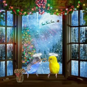 天使のとこちゃん メリークリスマス