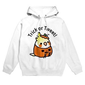Trick or Tweet! オカメインコがかぼちゃになっちゃった!
