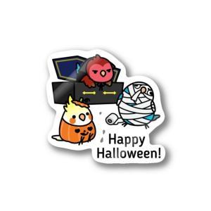 Happy Halloween! オカメインコ & コザクラインコ