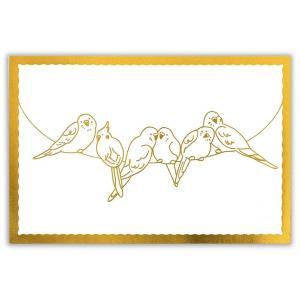 愛鳥さん色に塗りましょう! セキセイインコ&オカメインコ ぬり絵ポストカード