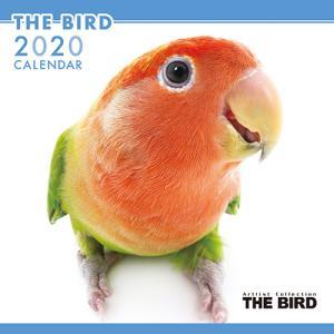 表情豊かな小鳥の壁掛けカレンダー