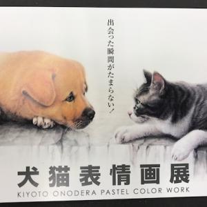 行ってきました表参道:犬猫表情展 by Kiyoto Onodera...♪