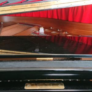 ピアノの中のお客さま