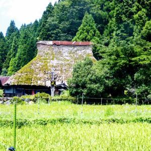 京都広河原の別荘 の近くの風景です