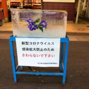近江町市場の氷柱 2020
