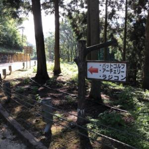 森林公園パトロール2020秋?