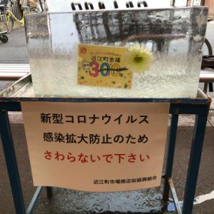 近江町市場氷柱初め2021