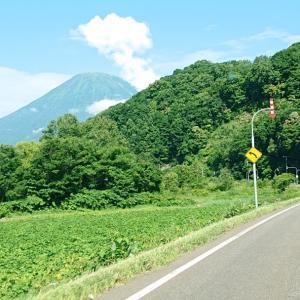 羊蹄山見てから格安オキシクリーン見つけた…赤帽札幌シェルパ