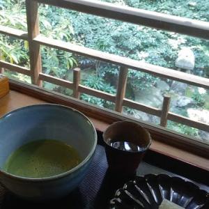 春の恵みと、お茶を一服