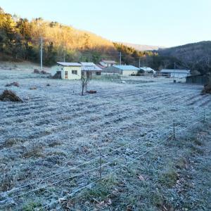 ‐6℃の霜降り快晴の朝