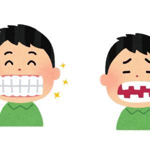 歯並びの話♪