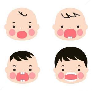 乳歯の役割♪