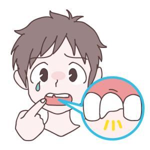 歯をぶつけた時のマメ知識♪