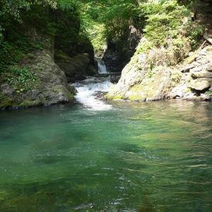 滝川のゴミ