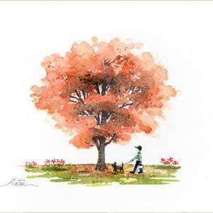 ◆ 紅葉・犬のお散歩 ◆