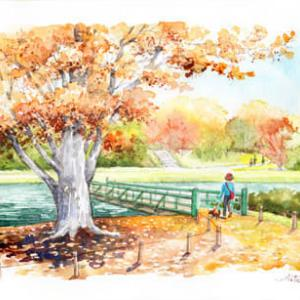 ◆ 万博記念公園の秋 ◆