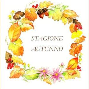 ◆ 秋のリース(蔵出し) ◆