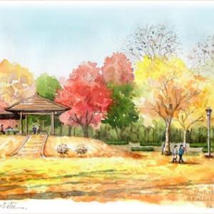 ◆ つくば市・赤塚公園 ◆