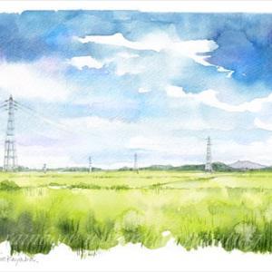 ◆夏空と筑波山・取手にて◆