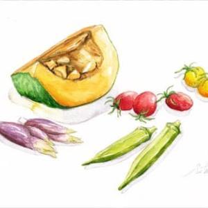 ◆カボチャと夏野菜◆