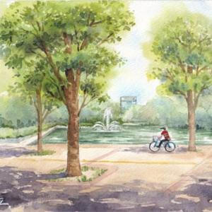 ◆ つくば中央公園 ◆