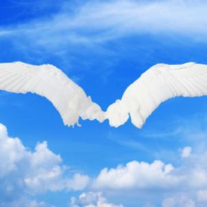 魂は「龍は誰にでも見えるようになる!」くらいの大胆でポジティブな思考をお望み!