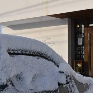 雪すごいパート2