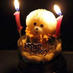 11歳の誕生日ケーキ(2020年9月)