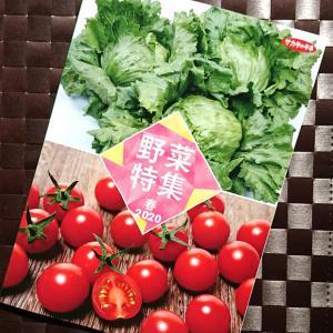 サカタのタネさんの冊子(野菜特集・春2020) 『農業女子的 栽培手帖』