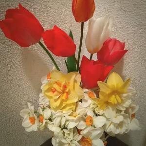 トイレのみ生花をいつも飾ってある♬癒される~