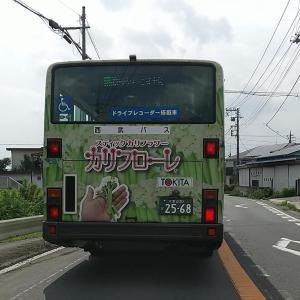 『カリフローレ』バスに出合った!しかも後ろ(笑)