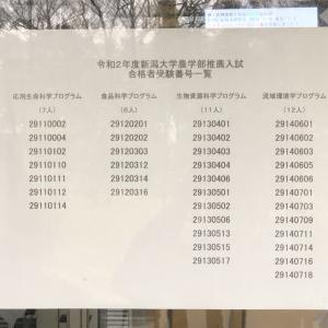 ★【速報】令和2年度 新潟大学 農学部 推薦入試 合格発表!!
