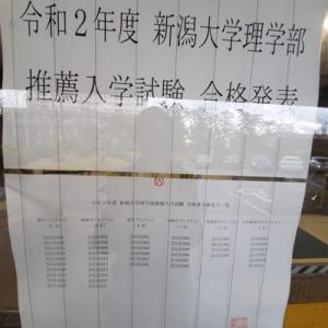 ★【速報】令和2年度 新潟大学 理学部 推薦入試 合格発表!!