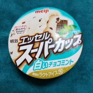 白いチョコミントアイスと【ウェブルームブラウニー】賃料19,000円~★家電プラン対応