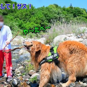 「きなこ餅」太郎の出来上がり♪+サークル動画
