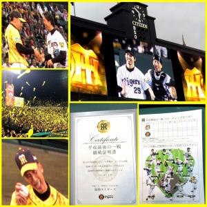 平成最後の聖地阪神甲子園球場