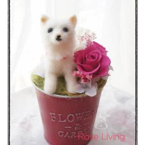 ペットのお花(白のワンちゃん)